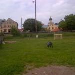 Botkyrka-20120707-02023