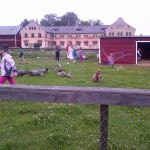 Botkyrka-20120714-02206